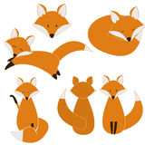 Cute fox set Stock Images