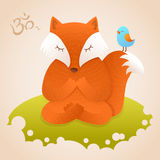Cute fox sitting in yoga lotus pose Royalty Free Stock Photos