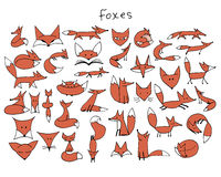 Cute fox sketch, collection for your design Stock Photo