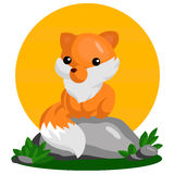 Cute Fox Stock Photo