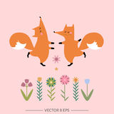 Cute  foxes Royalty Free Stock Photography