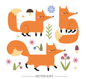 Cute  foxes Stock Images
