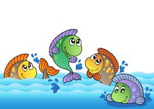 Cute freshwater fishes in river Stock Photos