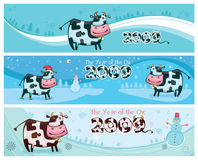 Cute friendly cows banners. Cute friendly cow. 2009 is the Year of the Ox according to the Chinese Zodiac. To see similar, please VISIT MY GALLERY Stock Image