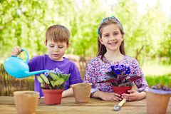 Cute friends gardening. Two youngsters taking care of violets in the garden royalty free stock image