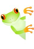 Cute frog Royalty Free Stock Photography
