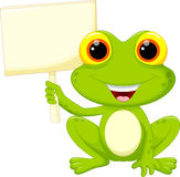 Cute frog cartoon Stock Images
