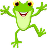 Cute frog cartoon Stock Photos