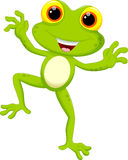 Cute frog cartoon Stock Photography