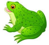 Cute Frog cartoon royalty free stock photography