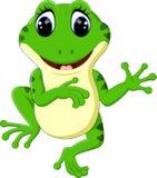 Cute frog cartoon Royalty Free Stock Photos