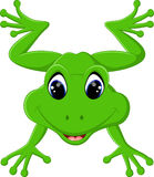 Cute frog cartoon Royalty Free Stock Photo
