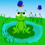 Frog in the swamp - vector illustration, eps vector illustration