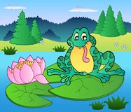 Cute frog sitting on water lily Stock Image