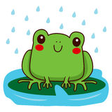 Cute Frog Smiling Royalty Free Stock Photos