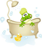 Cute frog taking a bath Royalty Free Stock Photos