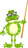 Cute frog teacher Royalty Free Stock Images