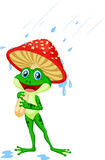 Cute frog wearing rain gear under mushroom Royalty Free Stock Photo