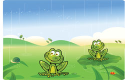 Cute frogs cartoon with background Stock Images