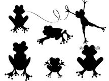 Cute frogs collection. Illustration cute frogs silhouette collection Stock Photography