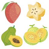 Cute fruit collection04 Stock Image