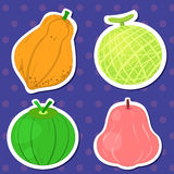 Cute fruit collection05. Four cute fruits with papaya, cantaloupe, coconut,and wax apple Royalty Free Stock Images