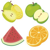 Cute fruit collection05. Four cute fruits with apple, orange, guava,and watermelon Royalty Free Stock Image