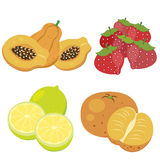 Cute fruit collection07 Stock Photos