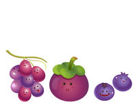 Cute fruits-grape, mangosteen, blueberry Royalty Free Stock Images