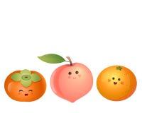 Cute fruits-persimmon, peach, orange Stock Image