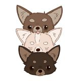 Cute funny animal heads together on white background. Vector hand drawn illustration of little doggies vector illustration