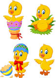 Cute funny baby chicken with Easter egg collection set Stock Image