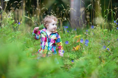 Cute funny baby girl playing in the park on an autumn day Royalty Free Stock Photography