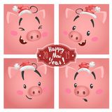 Cute funny big pig faces in christmas hats set. For greeting cards and calendars designs. Chinese 2019 year symbol. Vector stock illustration