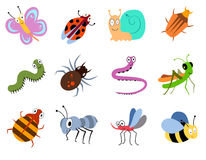 Cute and funny bugs, insects vector collection Royalty Free Stock Images