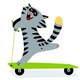 Cute funny cartoon cat on kick scooter. Feline cheerful sporty c Royalty Free Stock Image