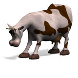 Cute and funny cartoon cow Stock Images