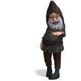 Cute and funny cartoon garden gnome Stock Images