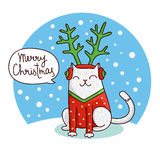 Cute and funny Christmas cat in the hat with antlers. Royalty Free Stock Images