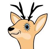 Cute funny deer head cartoon Royalty Free Stock Photography