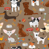Cute funny dogs seamless pattern vector illustration Royalty Free Stock Photography