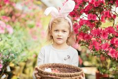 Cute funny girl with Easter bunny ears at garden. easter concept. Laughing child at Easter egg hunt stock photography