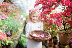 Cute funny girl with Easter bunny ears at garden. easter concept. Laughing child at Easter egg hunt. Baby caucasian celebrate celebration cheerful colorful stock photography