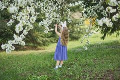Cute funny girl with Easter eggs and bunny ears at garden. easter concept. Laughing child at Easter egg hunt. Baby caucasian celebrate celebration cheerful royalty free stock photo