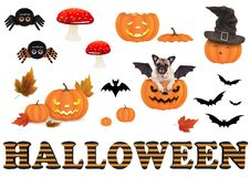 Cute funny halloween decoration elements,. Isolated on white background Royalty Free Stock Photography