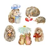 Cute and funny hedgehogs. Cartoon animals, watercolor characters isolated on white. Watercolor hedgehogs set. Cute funny characters suitable for print on royalty free illustration