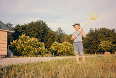 Cute funny little boy running to catch butterflies Royalty Free Stock Image