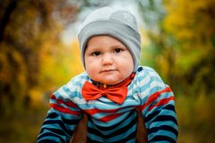 Cute funny little kid with a red bow tie at the neck in autumn. Cute funny little boy with a red bow tie at the neck in autumn royalty free stock images