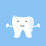 Cute and funny little shiny white tooth Royalty Free Stock Photos