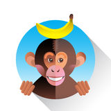 Cute funny monkey with banana Stock Photo